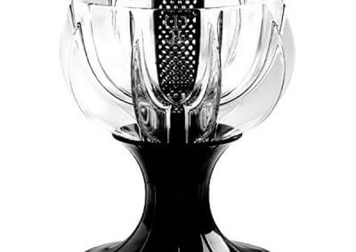 black velvet wine aerator
